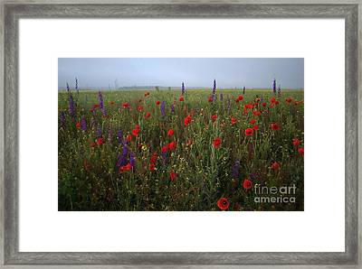 Young Princes Of The Field Framed Print