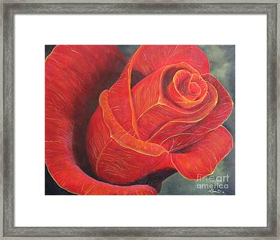 Young Rose Framed Print by Gina DeRuggiero