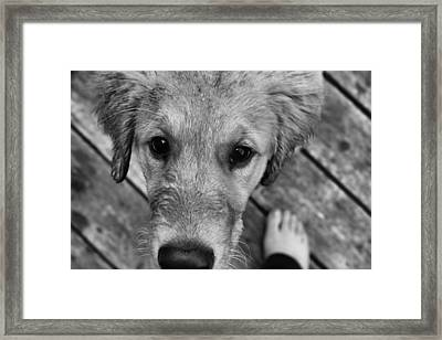 Yours Framed Print by Tami Rounsaville