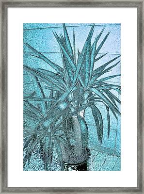 Yucca Nature Framed Print by Marsha Heiken