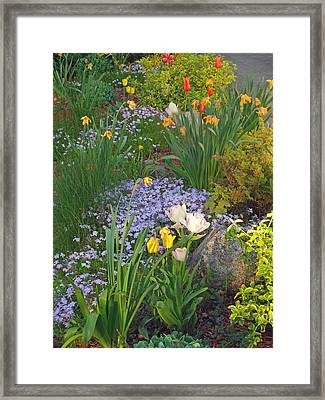 Zacks Garden - Hope Bay Campground Framed Print by Cyryn Fyrcyd