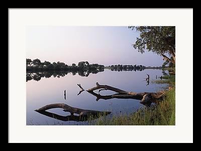 Zambesi River Photographs Framed Prints