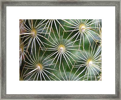 Framed Print featuring the photograph Zapped Photography by Tina Marie