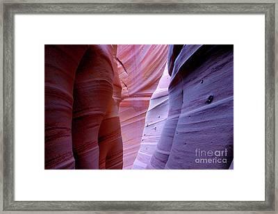 Zebra Canyon Framed Print by Keith Kapple