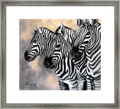Zebra Crossing Framed Print