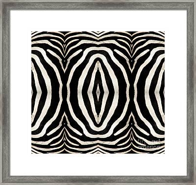 Zebra Hide Framed Print by Rose Santuci-Sofranko