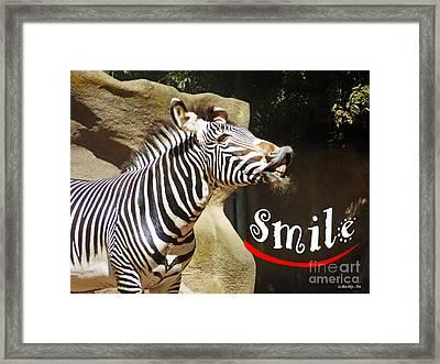 Zebra Smile Framed Print by Methune Hively