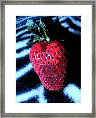 Zebra Strawberry Framed Print by Kym Backland