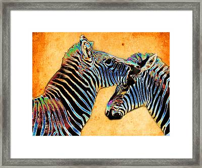 Zebra Tales Framed Print by Barbara  White