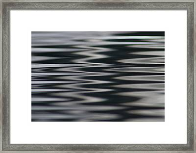 Zebra Waters Framed Print by Cathie Douglas