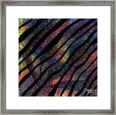 Zebra Yumyum Framed Print