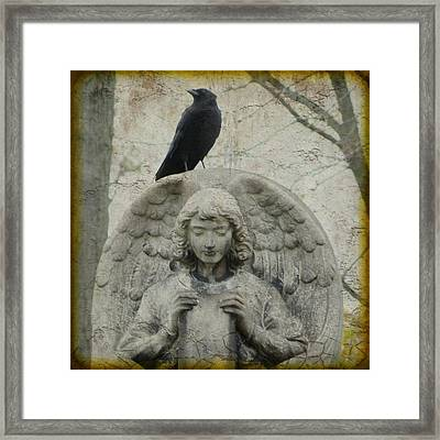 Zen Crow On Stone Angel Framed Print by Gothicrow Images