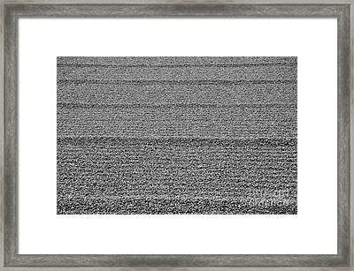 Zen Garden Abstract Framed Print by Dean Harte