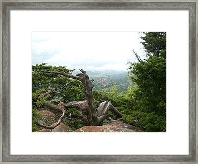 Zen Framed Print by Jessica Jandayan