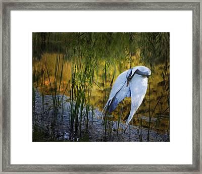 Zen Pond Framed Print by Melinda Hughes-Berland