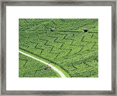 Zig-zag In Vineyards Framed Print