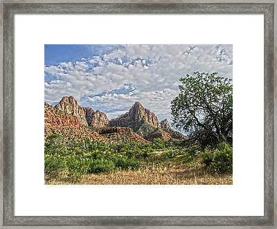 Framed Print featuring the photograph Zion National Park by Anne Rodkin