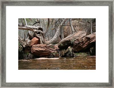 Zion Park Framed Print