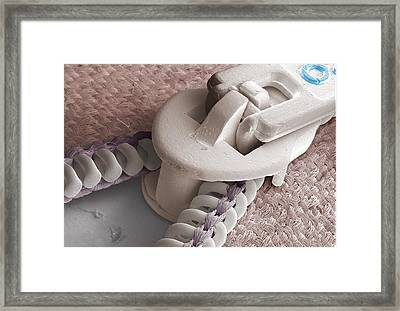 Zip, Sem Framed Print by Power And Syred