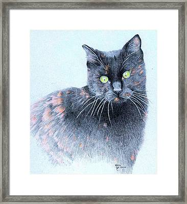 Zoe  Neighborhood Character Framed Print by Ann Hamilton