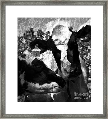 Zoey Plays With Matilda Framed Print