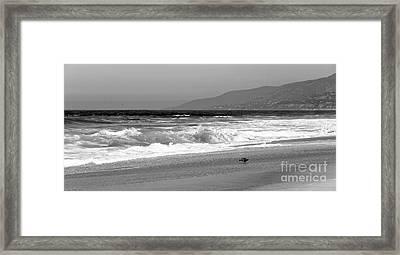 Zuma Beach Framed Print by John Rizzuto