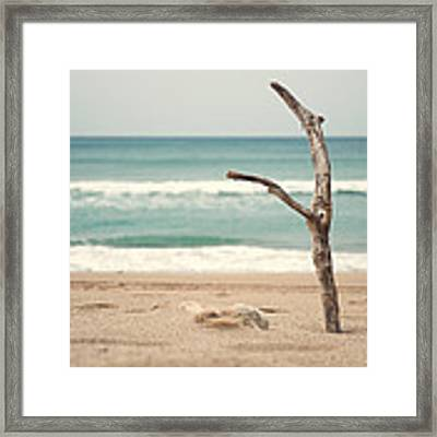Lone Tree Framed Print by Yew Kwang