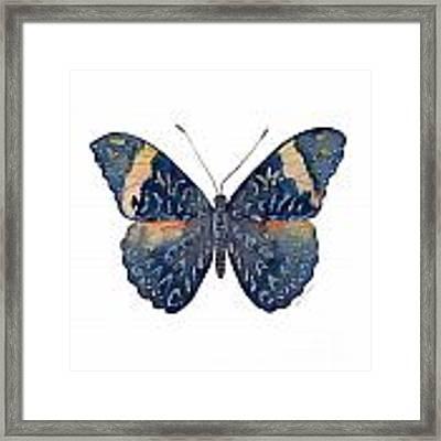 89 Red Cracker Butterfly Framed Print