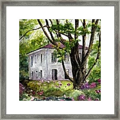 A Breeze Needed Framed Print by Wendy Ray