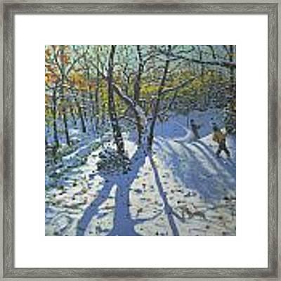 Allestree Park Woods November Framed Print by Andrew Macara