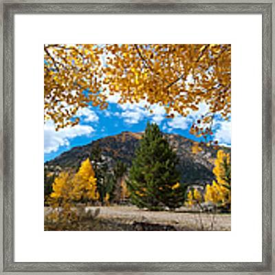 Autumn Scene Framed By Aspen Framed Print by Cascade Colors