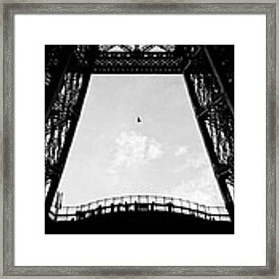 Birds-eye View Framed Print by Dave Bowman