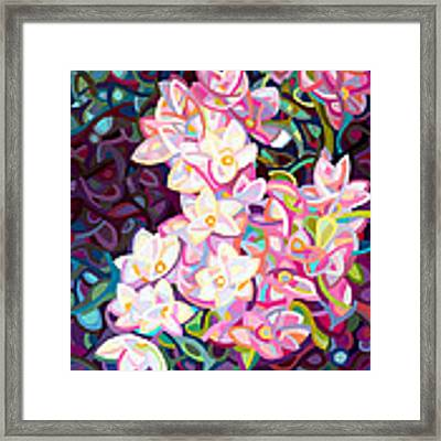 Cascade Framed Print by Mandy Budan