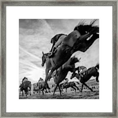 Cheltenham Jumps Festival Framed Print by Sharon Lee Chapman