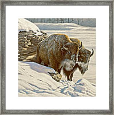 'cold Day At Soda Butte' Framed Print