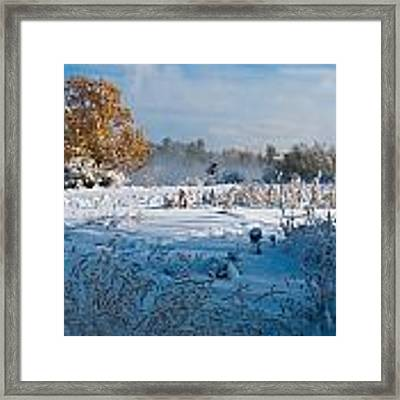 Colorado Waning Autumn And Approaching Winter Framed Print by Cascade Colors