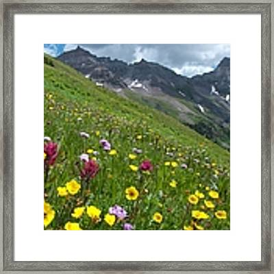 Colorado Wildflowers And Mountains Framed Print by Cascade Colors
