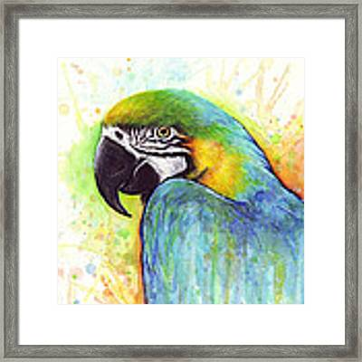 Macaw Watercolor Framed Print by Olga Shvartsur