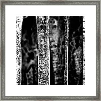 Crystal Pillars Framed Print by Brad Brizek