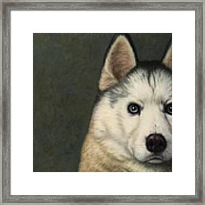 Dog-nature 9 Framed Print