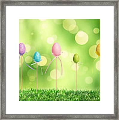 Easter Eggs Framed Print by Amanda Elwell