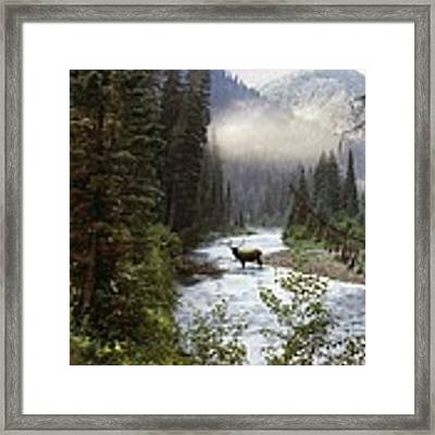 Elk Crossing Framed Print by Leland D Howard
