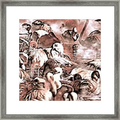 Flamingo Dreams Framed Print by Donna Proctor