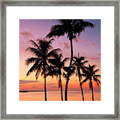 Florida Breeze Framed Print by Chad Dutson