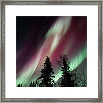 Flowing Colours Framed Print by Priska Wettstein