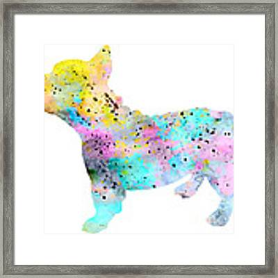 French Bulldog 4 Framed Print