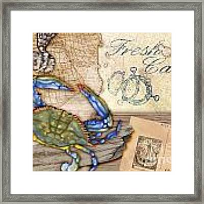 Fresh Catch Blue Crab Framed Print by Paul Brent