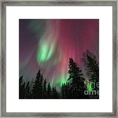 Glowing Skies Framed Print by Priska Wettstein