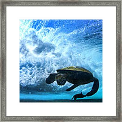 Grace Under The Waves Framed Print by Sean Davey
