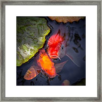 Hopeful Faces Framed Print by Priya Ghose